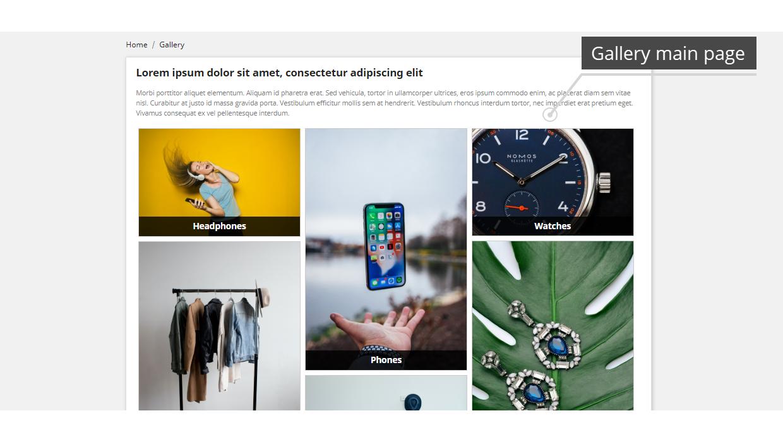 Professional Gallery PrestaShop Module